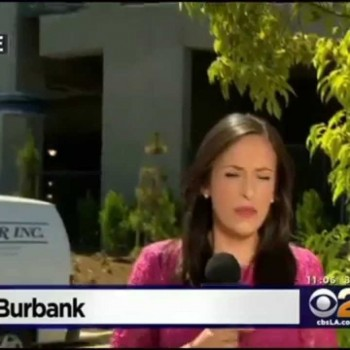 CBS News – Burbank Airport sets new standard